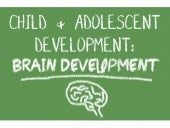 BRAIN DEVELOPMENT