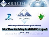 Workflow Modeling in EU GENESIS Project
