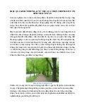 Chế phẩm vườn sinh thái tin cậy