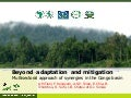 Beyond adaptation and mitigation - Multisectoral approach of synergies in the Congo basin