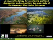 A new methodology for monitoring peatland degradation: Case study of the Okavango River Delta, Botswana