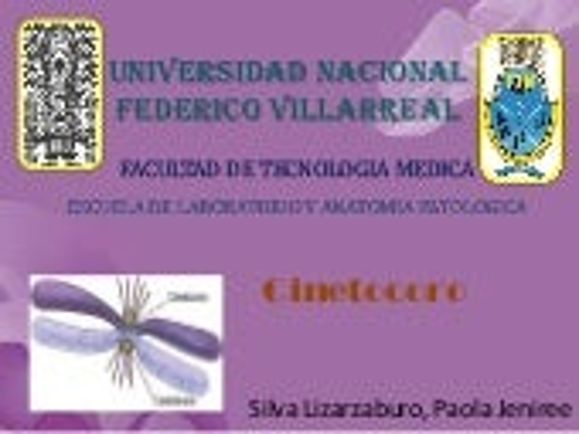 Cinetocoro