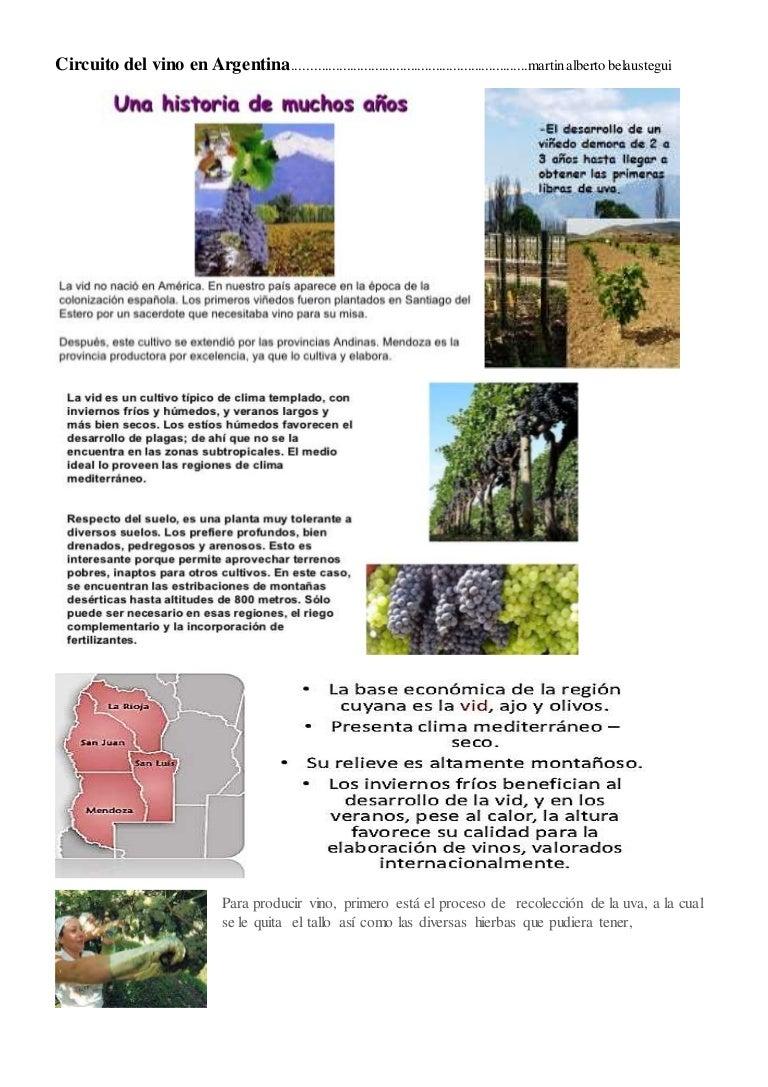 Circuito Productivo De La Caña De Azucar : Circuito productivo de vino en argentina