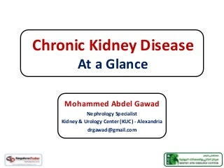 Chronic Kidney Disease (CKD) - At a Glance