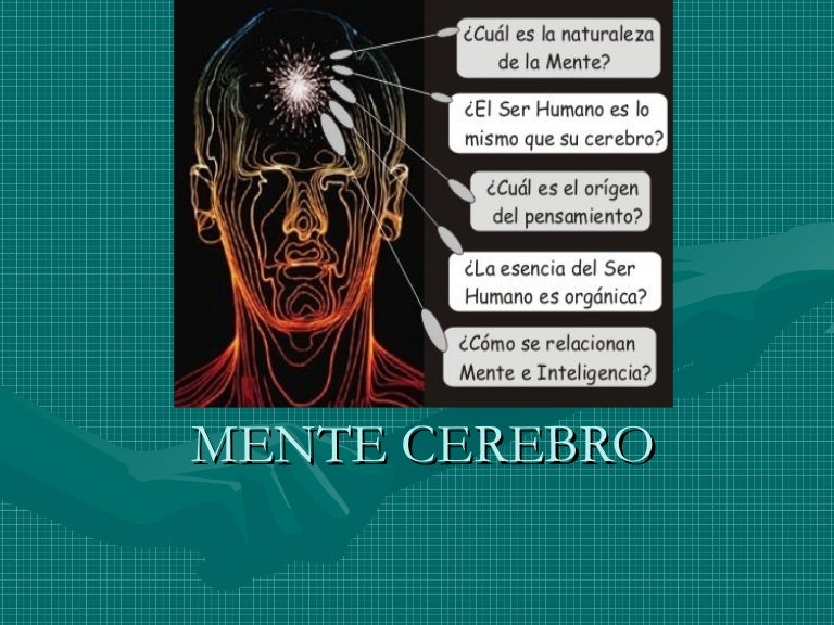 Resultado de imagen de Cerebro y Mente lo material y lo inmaterial