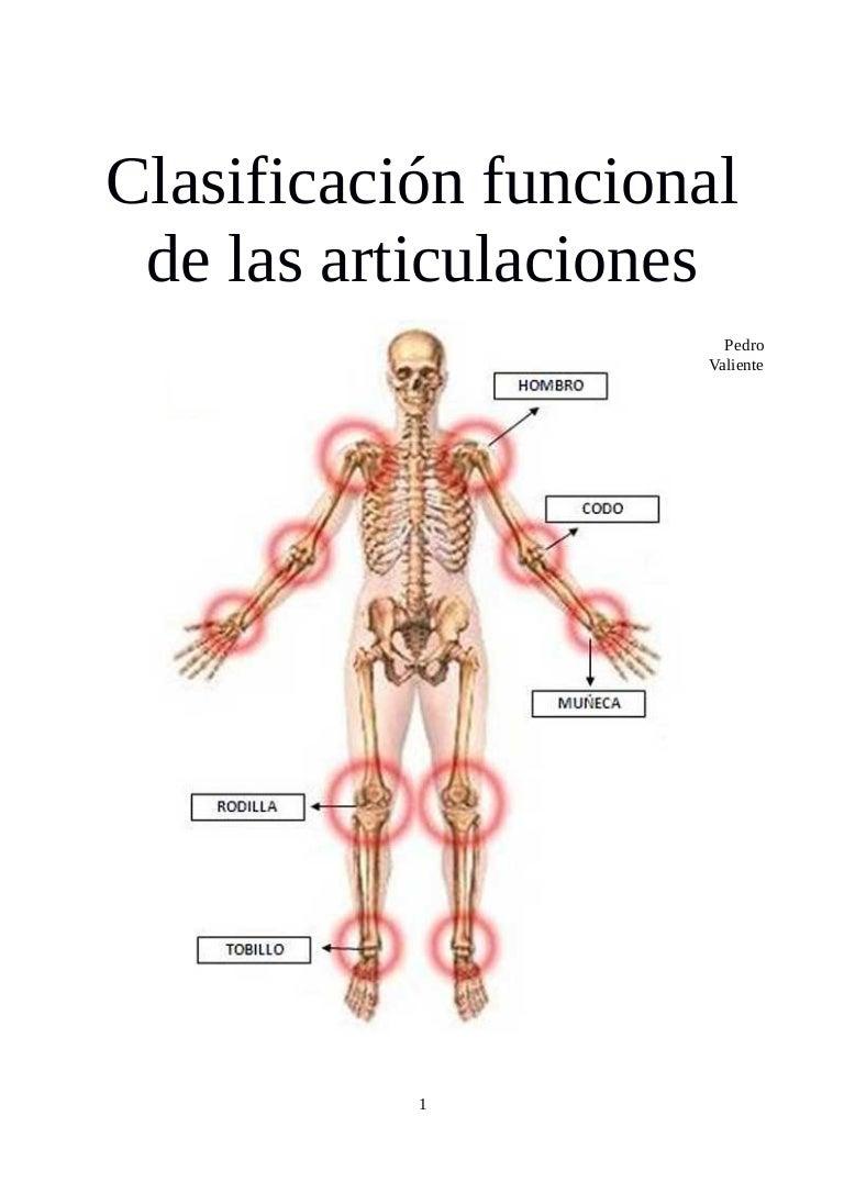 Clasificacion funcional articulaciones