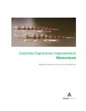 Customer Experience Improvement Momentum: Whitepaper