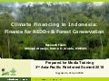 Climate financing in Indonesia: Finance for REDD+ & forest conservation