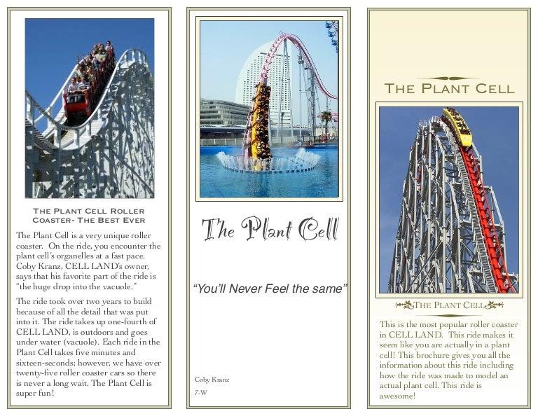 Amusement Park Cell Brochure Project Wwwshamstore