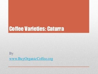 https://cdn.slidesharecdn.com/ss_thumbnails/coffee-varieties-caturra-150829193906-lva1-app6891-thumbnail-3.jpg