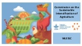 Commission on the Sustainable Intensification of Agriculture - overview