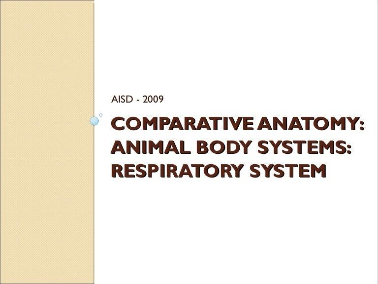 Comparative Anatomy Respiratory System