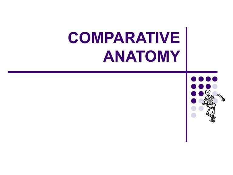 Comparativeanatomystationsredo 140326084841 Phpapp01 Thumbnail 4gcb1395823775