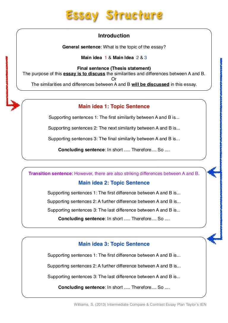 Differences Between The Topic Sentence And The Main Idea The Pen