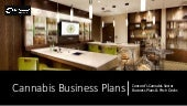 Concord Business Plans Cannabis Sector Work
