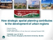 How strategic spatial planning contributes to the development of urban regions