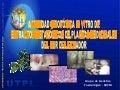 ACTIVIDAD CITOTÓXICA IN VITRO DE EXTRACTOS METANÓLICOS DE PLANTAS MEDICINALES DEL SUR DEL ECUADOR