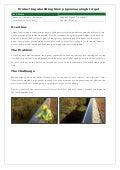 Construction bird-gel-case-study