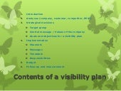 Contents of a visibility plan