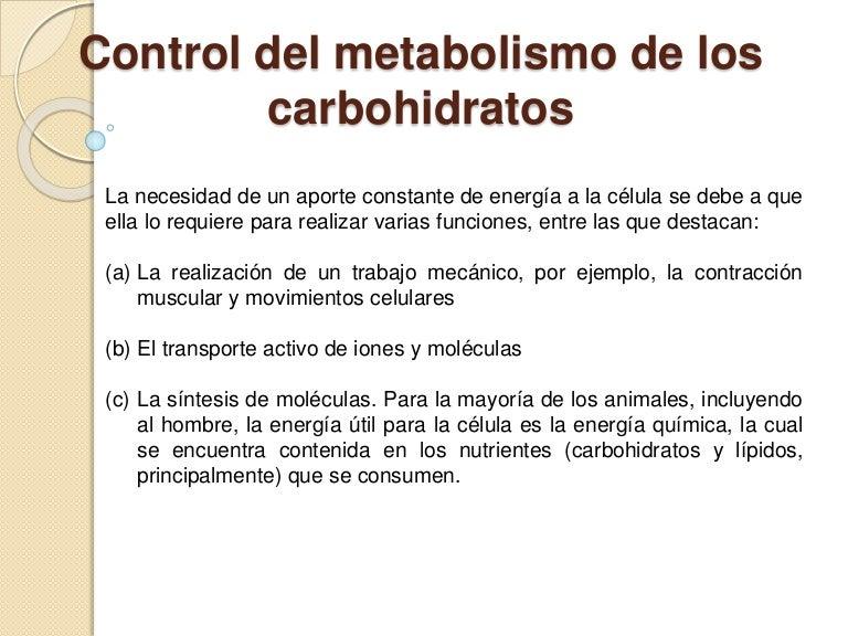 Carbohidratos Que Te Ayudan En La Dieta  El Blog De La Obesidad