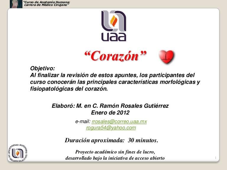 Corazon primera