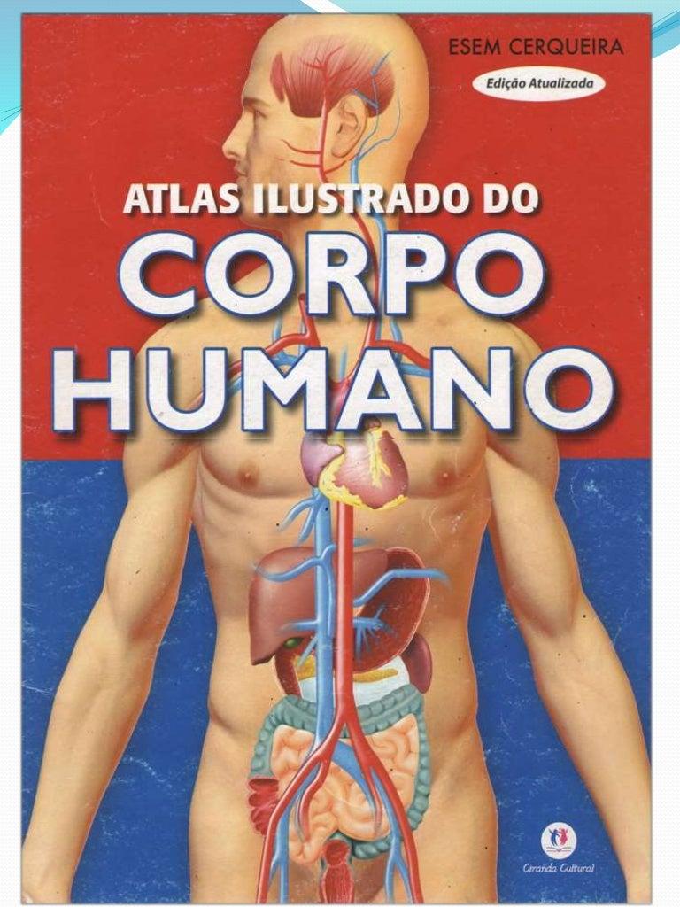 Corpo Humano Completo