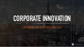 How Corporations Drive Innovation Leveraging Silicon Valley. By Tommaso Di Bartolo