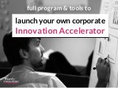 Launch your own: Corporate innovation accelerator