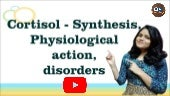 Cortisol- Synthesis, Regulation, Physiological actions, Disorders I Adrenal I Endocrine Physiology