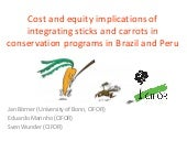 Cost and equity implications of integrating sticks and carrots in conservation programs in Brazil and Peru