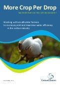 More Crop Per Drop - Water Report on the Cotton Industry
