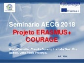 Outputs of the ERASMUS + COURAGE Project