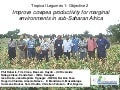 TLM III: Improve cowpea productivity for marginal  environments in sub-Saharan Africa – O Boukar
