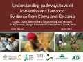 Understanding pathways toward low emissions livestock: Evidence from Kenya and Tanzania