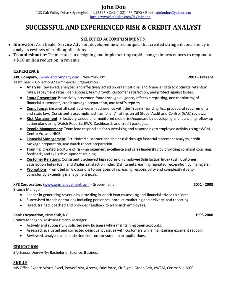 fraud analyst resume sample