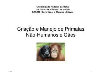 ICSC48 - Criação e manejo de primatas não humanos e cães
