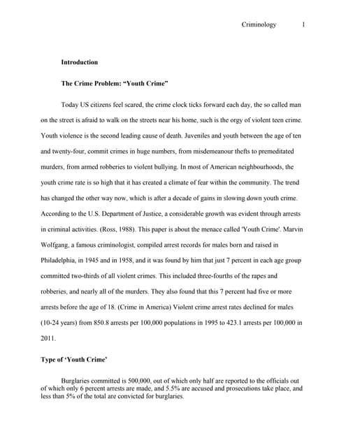juvenile crime essay