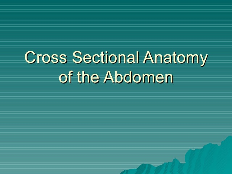 Cross Sectional Anatomy Of The Abdomen Annotated