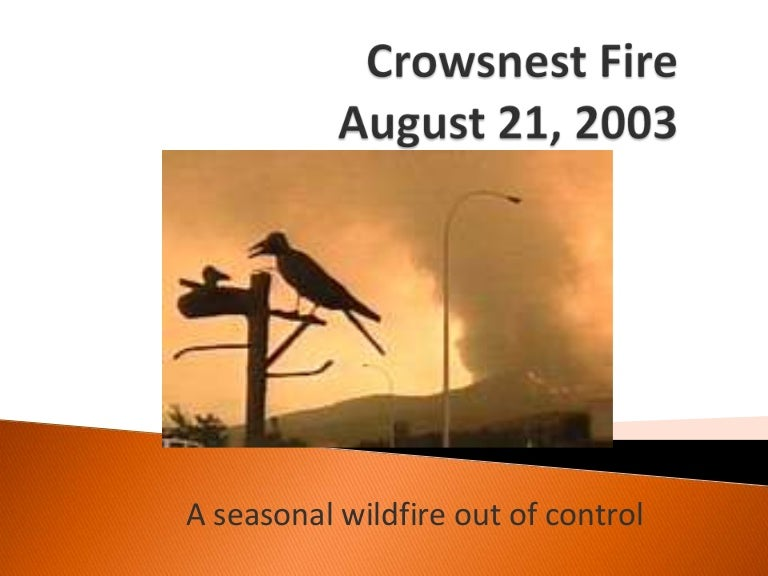crows nest fire - photo #5