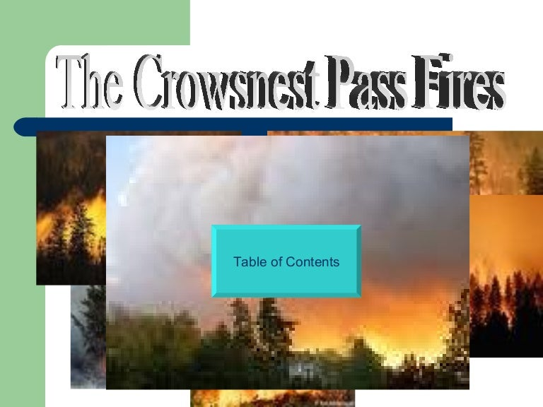 crows nest fire - photo #11