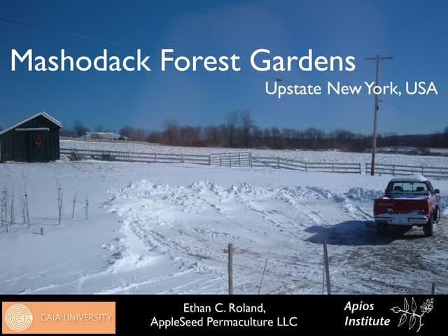 Mashodack Forest Gardens 2009