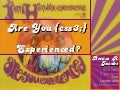 CSS3: Are you experienced?