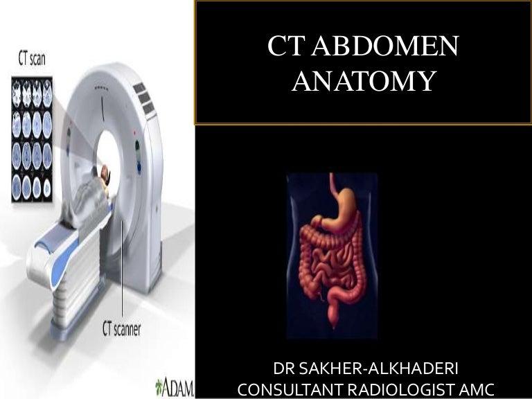 Ct Abdomen Anatomy