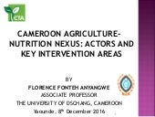 Cameroon agriculture-nutrition nexus: actors and key intervention areas