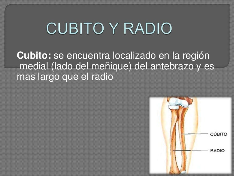 cubitoyradio-121006132120-phpapp02-thumbnail-4.jpg?cb=1349529775