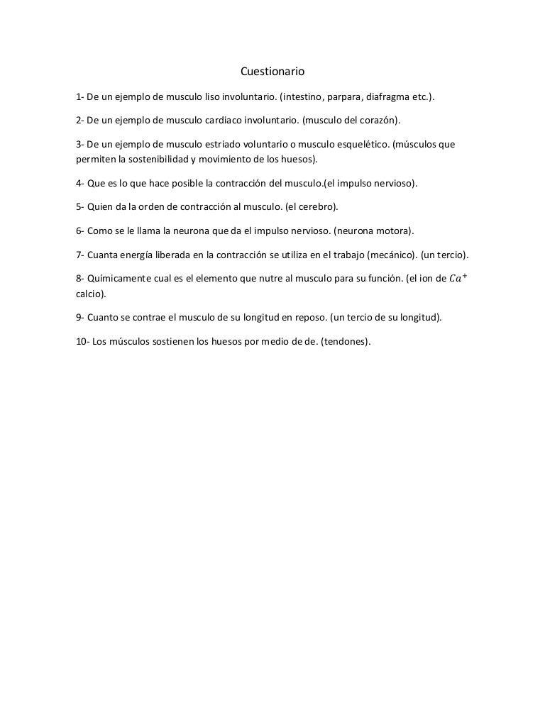 Moderno Músculo Anatomía Cuestionario Colección de Imágenes ...