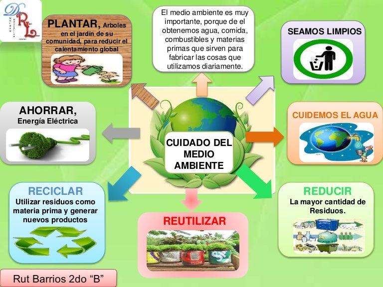 Cuidado del medio ambiente for Oficina medio ambiente