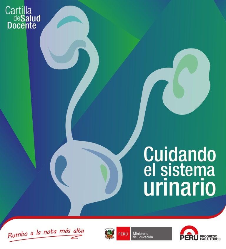 Cuidando el-sistema-urinario