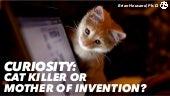 Curiosity | Cat Killer or Mother of Invention?