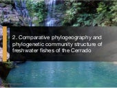 Project Overview: Comparative Phylogeography and Phylogenetic Community Structure of Freshwater Fishes of the Cerrado